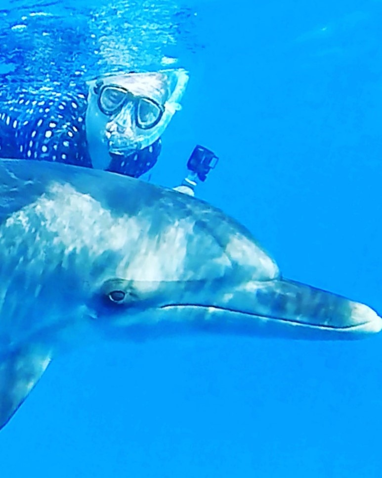 Ines and a juvenile spotted dolphin having fun together!